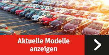 Vw Direktimport Auto Schiess Import Von Neu Sowie Gebrauchtwagen